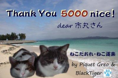 5000nice-1-8754b.jpg